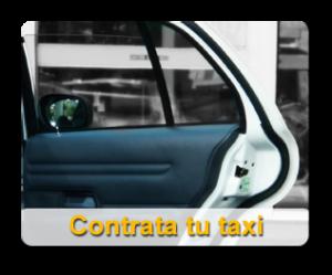 Contrata tu taxi con Lleida Taxi